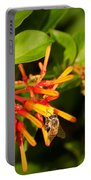 Honey Bee 6 Portable Battery Charger