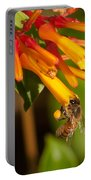 Honey Bee 7 Portable Battery Charger