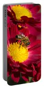 Honey Bee And Chrysanthemum Portable Battery Charger by Christina Rollo