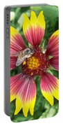 Honey Bee On A Indian Blanket Portable Battery Charger