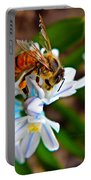 Honeybee And Squill Portable Battery Charger
