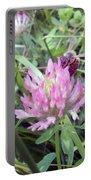 Honeybee Enjoying The Wild Purple Clover Portable Battery Charger