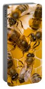 Honeybee Workers And Queen Portable Battery Charger