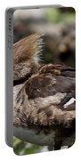 Hooded Merganser Female Portable Battery Charger