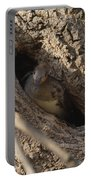Hooded Merganser In The Knot Hole  Portable Battery Charger
