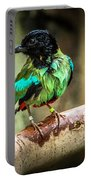 Hooded Pitta Portable Battery Charger