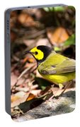 Hooded Warbler - Img_9349-001 Portable Battery Charger