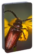 Horned Beetle Portable Battery Charger