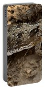 Horned Lizard   #8888 Portable Battery Charger