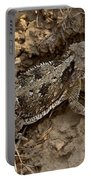 Horned Lizard   #8903 Portable Battery Charger