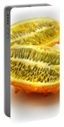 Horned Melon Portable Battery Charger