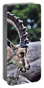 Horned Sheep Portable Battery Charger