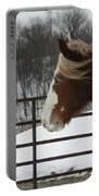 Horse 09 Portable Battery Charger