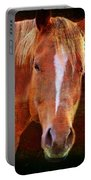 Horse 7 Portable Battery Charger