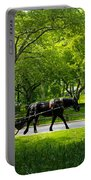 Horse And Carriage Central Park Portable Battery Charger