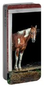 Horse - Barn Door Portable Battery Charger