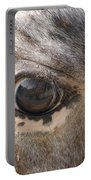 Horse Close Up Portable Battery Charger