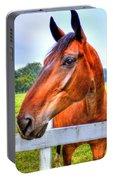 Horse Closeup Portable Battery Charger