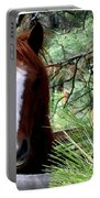 Horse Country Portable Battery Charger