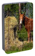 Horse Eating Hay In Eastern Texas Portable Battery Charger