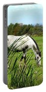 Horse Grazing In Field Portable Battery Charger