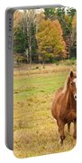 Horse In Field-fall Portable Battery Charger