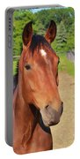 Horse In Stable Portable Battery Charger