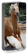 Horse On The Run Portable Battery Charger