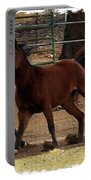 Horse Play Painting  Portable Battery Charger