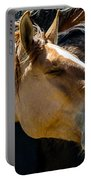 Horse Yawn Portable Battery Charger