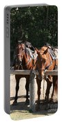 Horses Glacier National Park Montana Portable Battery Charger