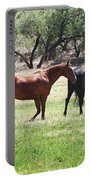 Horses Out Wickenburg Way Portable Battery Charger