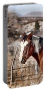 Horsing About V3 Portable Battery Charger