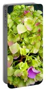 Hortensia With Touch Of Pink Portable Battery Charger