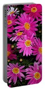 Hot Pink Daisies Portable Battery Charger