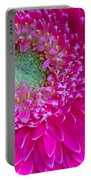 Hot Pink Gerbera Daisy Portable Battery Charger