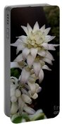Hotel Hosta Portable Battery Charger