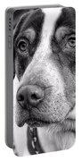 Hound Portable Battery Charger