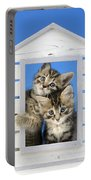 House Of Kittens Ck528 Portable Battery Charger