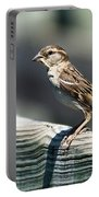 House Sparrow Portable Battery Charger