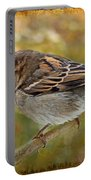 House Sparrow II Portable Battery Charger