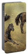 How A Black Horse Turns Brown - Pryor Mustangs Portable Battery Charger