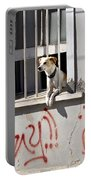 How Much Is That Doggie In The Window? Portable Battery Charger by Kurt Van Wagner