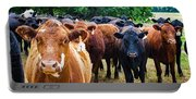 How Now Brown Cow Portable Battery Charger