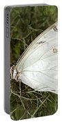 Huge White Morpho Butterfly Portable Battery Charger