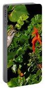 Humming Bird Honeysuckle Portable Battery Charger