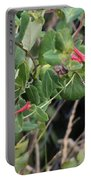 Humming Bird Perching On Vine Portable Battery Charger