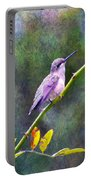 Hummingbird 2 Portable Battery Charger