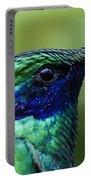 Hummingbird Closeup Portable Battery Charger
