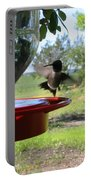 Hummingbird Flying To The Feeder Portable Battery Charger